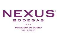 Nexus Frontaura